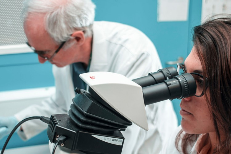 two researchers working in the lab