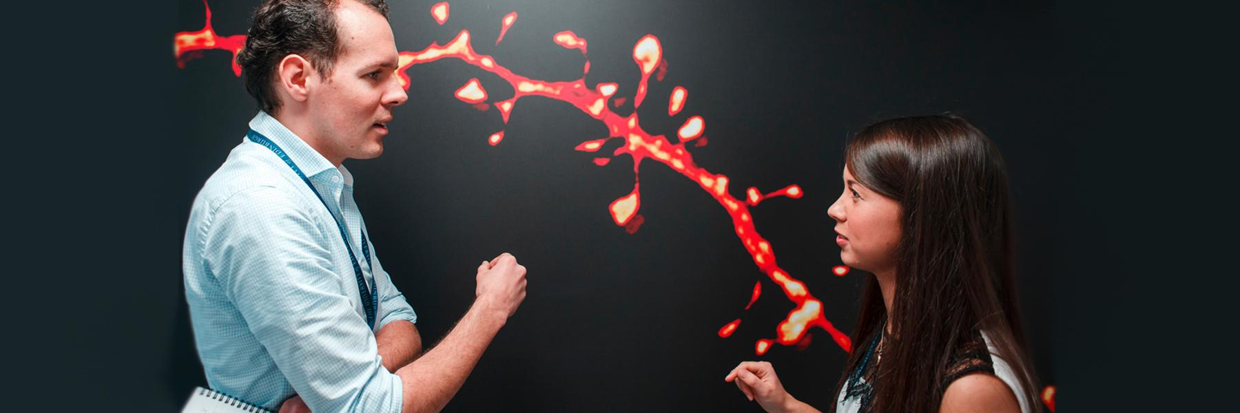 Two researchers talking in front of a neurological image